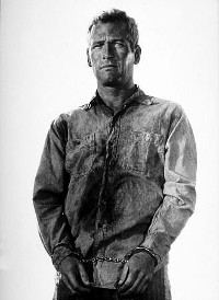 Newman in Cool Hand Luke